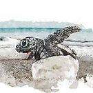 Baby Sea Turtle Hatching - Watercolor by mavisshelton
