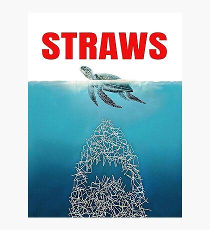Straws - Vintage Photographic Print