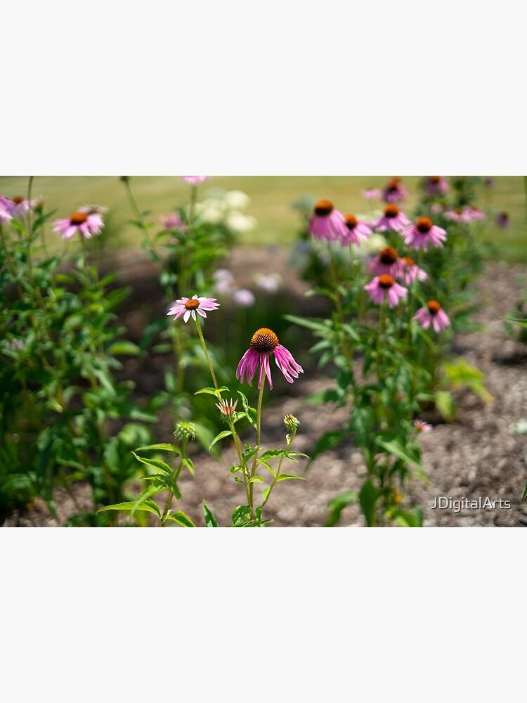 Summer's Lovely Flowers #3 by JDigitalArts