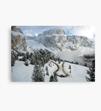 Wintry curve Canvas Print