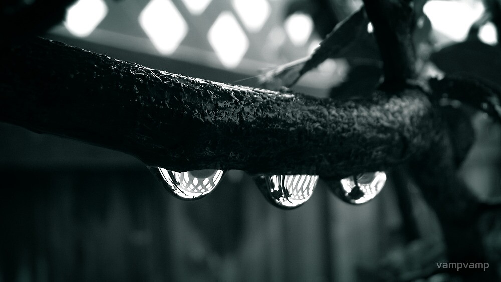 tree-drips by vampvamp
