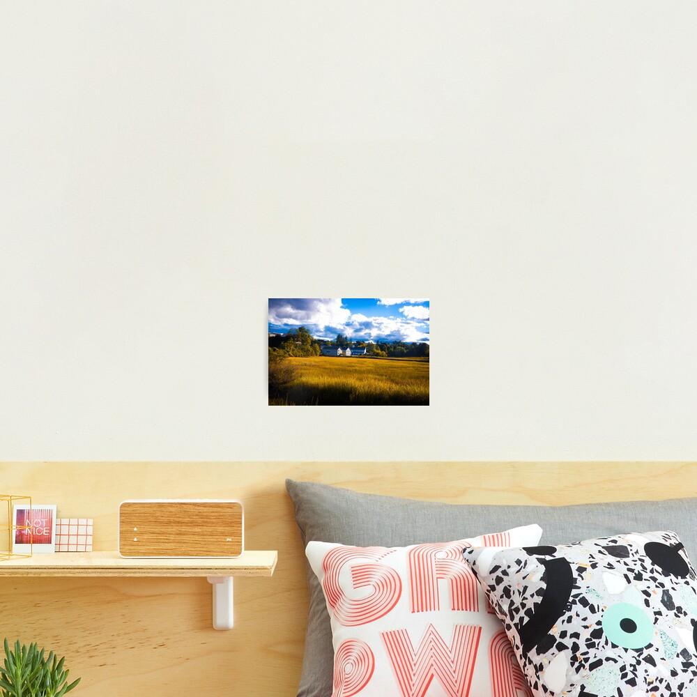 Salt Marsh Homes Photographic Print
