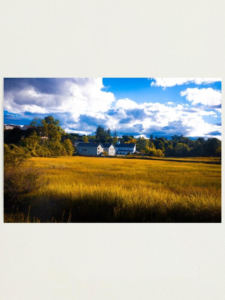 Alternate view of Salt Marsh Homes Photographic Print