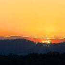 Golden Sunset by Kym Howard