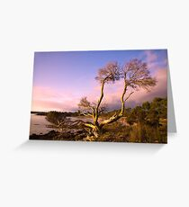 Coffin Bay Sunset Greeting Card