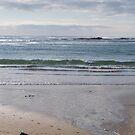 Apollo Bay Victoria  by Virginia McGowan
