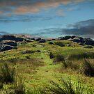 Brimham Rocks ~ Nidderdale ~ by Sandra Cockayne