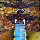 Dragonfly by Donata Zawadzka