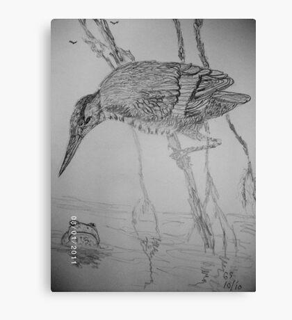 Green Heron & Frog Canvas Print