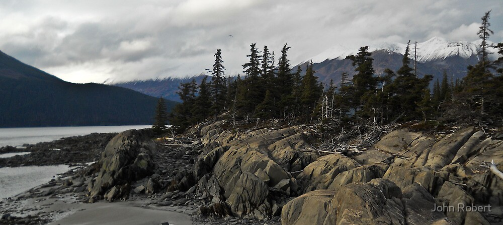 Beluga Point by Bob Moore
