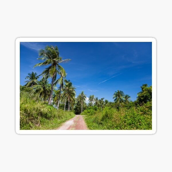 Road with palm trees and clear blue sky Sticker