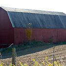 Large Red Barn by Jellybean720