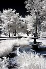 Fountain - Dunrobin, Ontario by Debbie Pinard