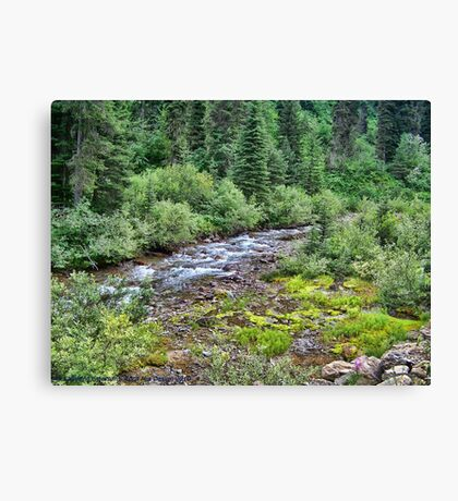 Canyon Creek 2 Canvas Print