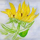 A Sunflower Blessing by Anne Gitto