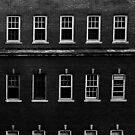 The Windows by Allison  Flores