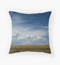 Nebraska Landscape Throw Pillow