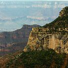 North Rim view by jeffrae