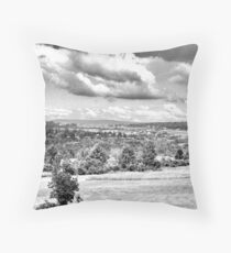 Ithaca Throw Pillow