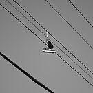 Bird On A Wire by Eric Scott Birdwhistell