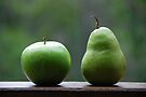 The Apple & Pear Sat Quietly Taking in the View... by Carol Knudsen