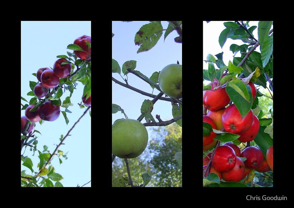 Autumn Fruits  by Chris Goodwin