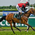 Starr Flyer at Aintree by Brian Tarr