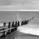 Groyne - Southwold, Suffolk by shutternutter