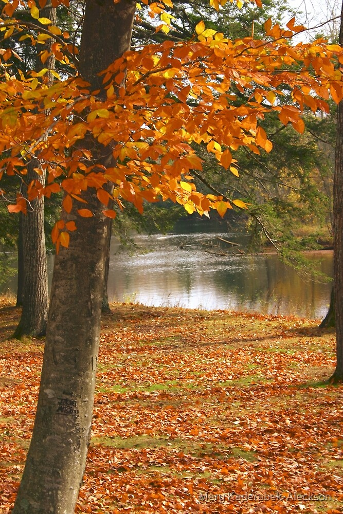 Autumn's Lush by Mary Kaderabek-Aleckson