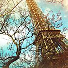 Eiffel Tower by Suzette McGrath
