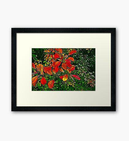 Autumn - Red Leaves Framed Print
