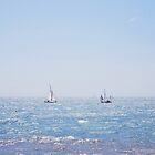 Sail Boats  by Candypop