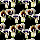 Arum Calla Lilies Pattern in Watercolor on Black Background  by Nisuris