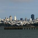 San Francisco Waterfront from Fort Point  by fototakerTony