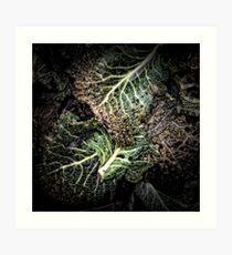 Compost Composé 75 Art Print