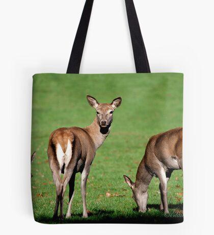 Red Deer Wollaton Park Tote Bag
