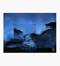 Chat bocal Photographic Print