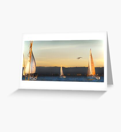 by the ropes: golden ride Greeting Card