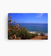 Spring at La Piedra State Beach Canvas Print