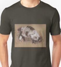 felix catching rays T-Shirt