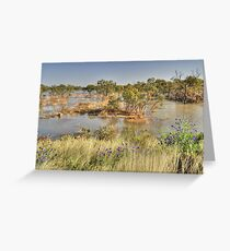 Water In The Outback Greeting Card