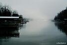 Lake Keowee Fog by Marcia Rubin