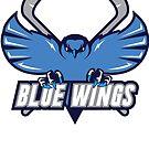 Blue Wings by jpappas