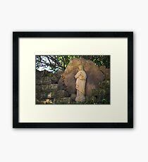 Mary Statue Framed Print