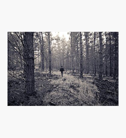 If you go into the woods... Photographic Print
