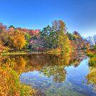 Fall in Wisconsin by ECH52