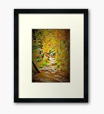 The Runner. Framed Print