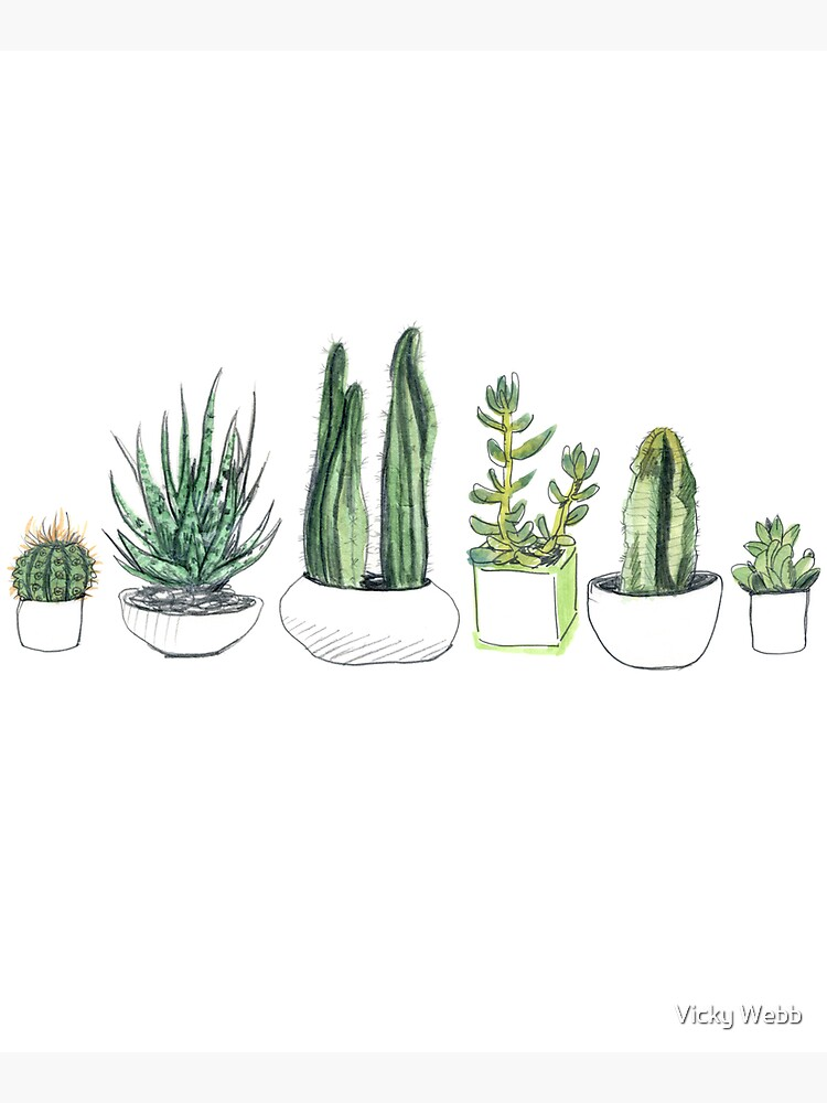 Watercolour cacti & succulents by crumpsticks