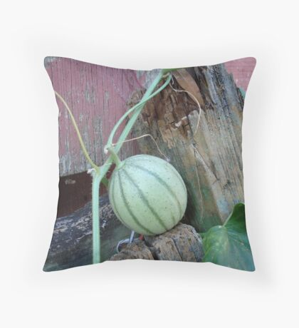 Best Seat in the Garden Throw Pillow