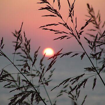 Sunset over the Mediterranean by dizzyg